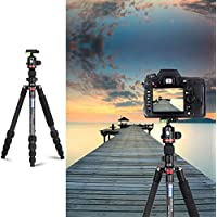 3WE Lightweight Carbon Fiber Dslr Tripod, 360 Ball Head, 65 Ultra Compact for Traval and Work,for Canon, Sony, Nikon, Olympus Devices,Camera Compact and Video Camera,Black