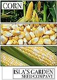 """Peaches and Cream"" Hybrid Bicolor Sweet Corn"