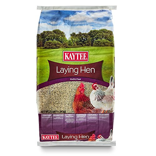 - Kaytee Laying Hen Diet, 25 Pound