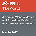 A German Went to Mexico and Turned the Border Into a Musical Instrument | Monica Campbell