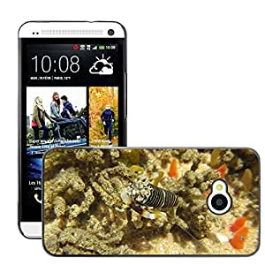 Super Stellar Slim PC Hard Case Cover Skin Armor Shell Protection // M00125659 Zebra Shrimp Shrimp Sea Life Sea // HTC One M7