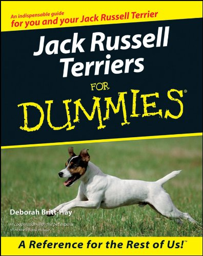 Jack Russell Terriers For Dummies for sale  Delivered anywhere in USA