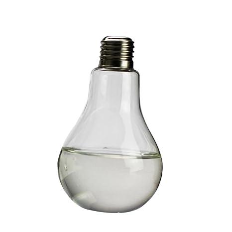 Jarrones Bombilla Forma de Tabla Botella de Vidrio Florero Decoración Flor Planta Transparente