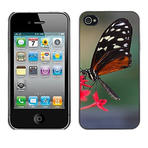 Premio Sottile Slim Cassa Custodia Case Cover Shell // F00017227 Hécalé papillon // Apple iPhone 4 4S 4G