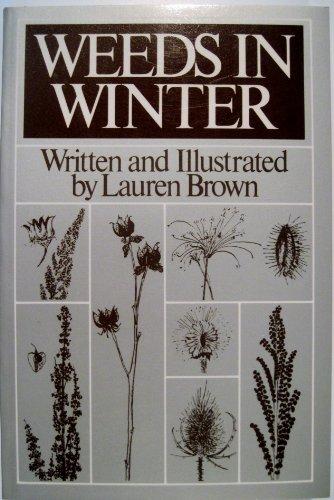 Weeds in Winter (Weeds And Wildflowers In Winter)