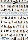 Nova: Dogs Decoded