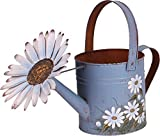 Attraction Design Antique Finish Spring Decorative Watering Can Metal Planter Flower Pot Succulent Container for Indoor or Outdoor