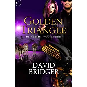 Golden Triangle Audiobook