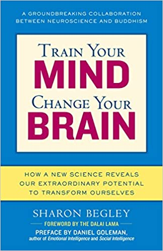 Train Your Brain Book