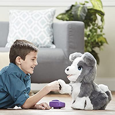 FurReal Ricky, The Trick-Lovin' Interactive Plush Pet Toy: Toys & Games