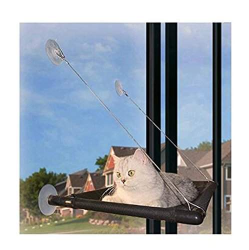 Cat Window Perch Cat Bed Hammock Kitty Window Seat Natural Scenery for Cats