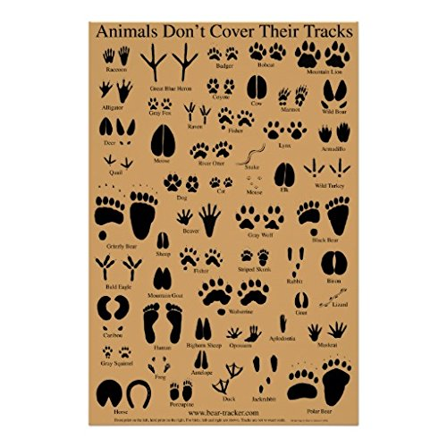 Dgyeune Animal Tracks Picture Canvas Print Unframed Canvas Wall Art Painting Pictures Print for Home Modern Decoration Ready to Hang 12*16 Inch,30*40cm - Animal Tracks Wall Art