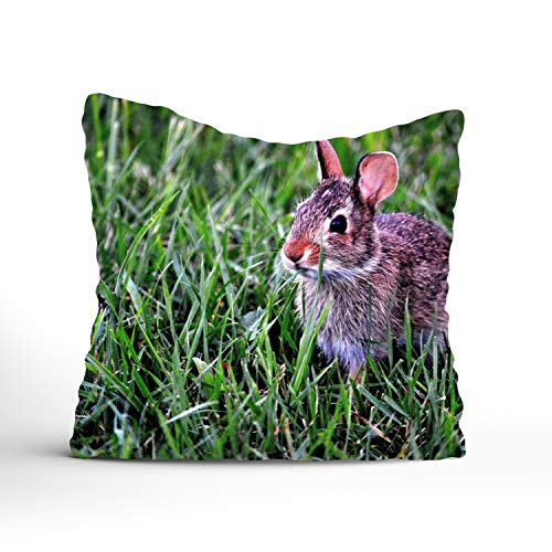 (Throw Pillow Cases Covers for Couch Bed Sofa,16