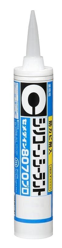 エピソード基礎ナサニエル区キクメン FRP補修8点セット インパラ樹脂500g アメ色透明 汎用ベーシック