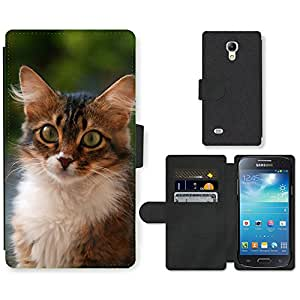 Hot Style Cell Phone Card Slot PU Leather Wallet Case // M00168967 Kitten Home Furry Animals Fluffy Cat // Samsung Galaxy S4 Mini i9190