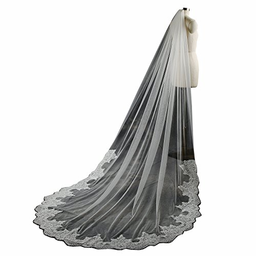 Ivory Cathedral Bridal Wedding Veil (Larovias One Layer Lace Cathedral Wedding Veil with Metal Comb LRV001 Ivory)