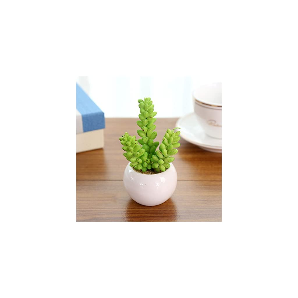 AllGreen-Assorted-Potted-Succulents-Plants-Decorative-Artificial-Succulent-Plants-Potted-Faux-Cactus-Aloe-with-Gray-Pots-Artificial-Topiary-Plant-Potted