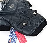 Soly Tech XS-XXL Cute Small Pet Puppy Winter Warm Coat Dog Cat Hoodie Jacket Costume