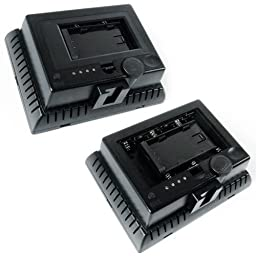 LimoStudio 2PC LED 160 Photographic Lighting Kit, Photo Studio Barndoor Light, Continuous Video Light, AGG1274