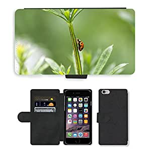 """PU LEATHER case coque housse smartphone Flip bag Cover protection // M00134788 Mariquita Mariquita Escarabajo // Apple iPhone 6 4.7"""""""