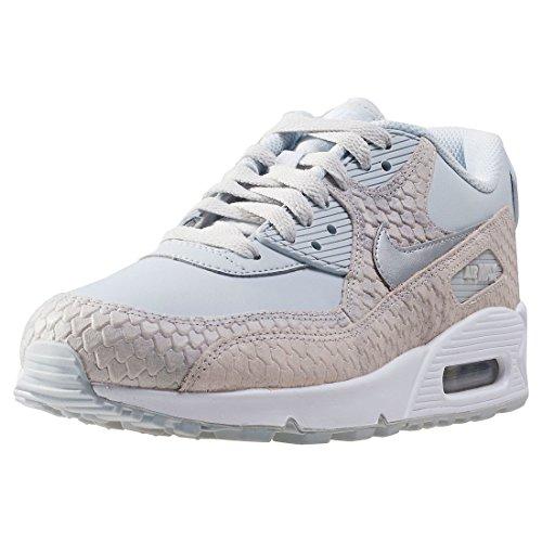 Nike Wmns Air Max 90 Premium Lifestyle Sneakers Vrouwen Zuiver Platina / Zuiver Platina Zuiver Platina / Zuiver Platina