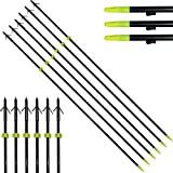 HBG 6Pcs Archery Fiberglass Fishing Arrows 34'' Length 8mm Bow Fishing Hunting Arrow Classic Fish Arrows with Points