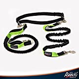 Riddick's Hands Free One & Two Dog Leashes, For Running, Walking, Hiking, Training, No Pull Shock Absorbing Bungee Leash, 4Ft Premium Quality Double Handle, (No Accessories)