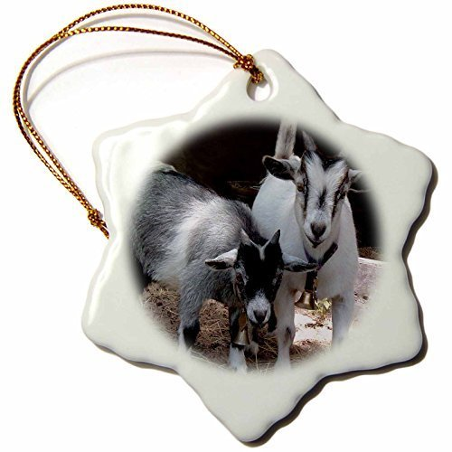 Reindeer Topiary (Pygmy Goat Snowflake Porcelain Ornament, 3-Inch)