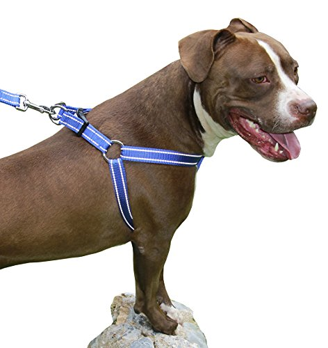 Puller Chest - CHILIPET Best Step in No Pull Dog Harness for Large & Medium Size Breeds, Fits on Chest Girth Sized (1.0