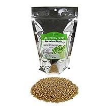 Hulled Buckwheat Groats- 1 Lbs - Organic Buck Wheat Groats- Sprouting Seed, Gardening, Planting, Edible Seeds, Emergency Food Storage, Hydroponics