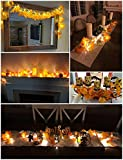 Thanksgiving Decorations Lighted Fall