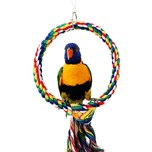 RYPET Bird Swing - Wooden Conure Toys Bird Cage Hammock Swing Hanging Toy for Small Parakeets Cockatiels, Conures, Macaws, Parrots, Love Birds, Finches(2 Packs) by RYPET (Image #2)
