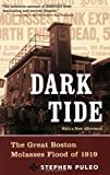 Dark Tide: The Great Boston Molasses Flood of 1919 by Puleo, Stephen 1st (first) Edition [Paperback(2004)]