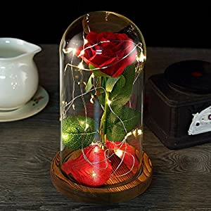 Nalosun Beauty and The Beast Rose Enchanted Red Silk Rose with Fallen Petals in Glass Dome on a Wooden Base Best Gift for Her,Mothers Day Valentine's Day Wedding Anniversary (A:Red Silk Rose) 78