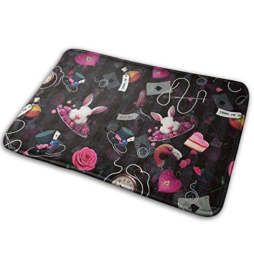 (Kui Ju Non-Slip Doormat Entrance Rug Fade Resistant Floor Mats Life Goods Shoes Scraper 23.6x15.7x0.39Inch)