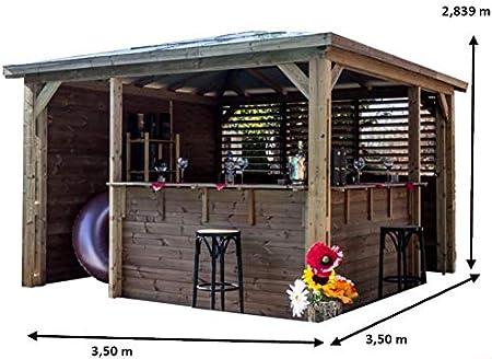Caraporte de aluminio con techo de 2 pendientes.: Amazon.es: Jardín