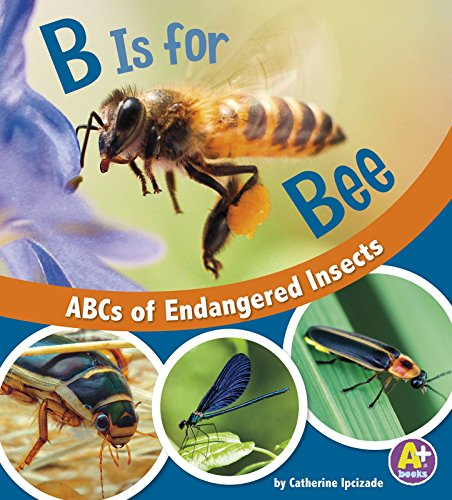 B Is for Bees: ABCs of Endangered Insects (E for Endangered)