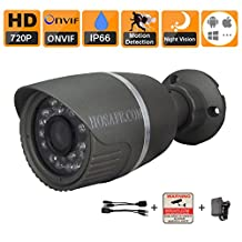 HOSAFE 1MB1G HD IP Camera Outdoor 720P Night Vision ONVIF H.264 Motion Detection Email Alert Remote View Via Smart Phone/Tablet/PC, Working With Foscam IP Camera Software Blue Iris iSpy IP Camera DVR (Grey)
