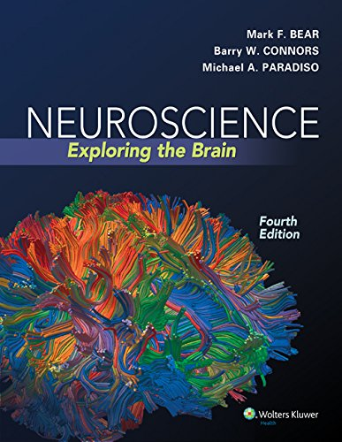 Neuroscience Exploring the Brain (4th 2015) [Bear, Connors & Paradiso]
