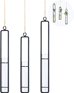 TINTON LIFE 3 Pieces of Hanging Glass Tube Vase for Wedding Flowers, Patio Garden Decor, Plants, Rooting, Spice or Scented Oil.