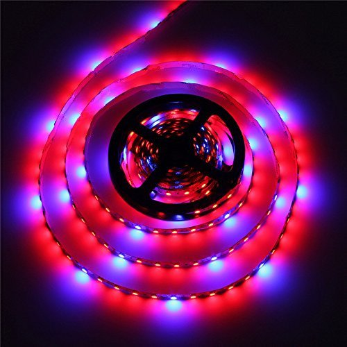 AUDEW 13.1ft 4:1 5050 Grow LED Strip Light Aquarium Greenhouse Hydroponic Plant 12V 12W(4M)