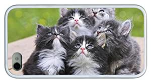 Hipster fashion iPhone 4 case Adorable Grey Kittens TPU White for Apple iPhone 4/4S