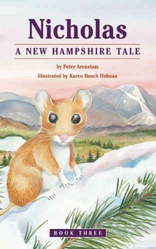 book cover of A New Hampshire Tale
