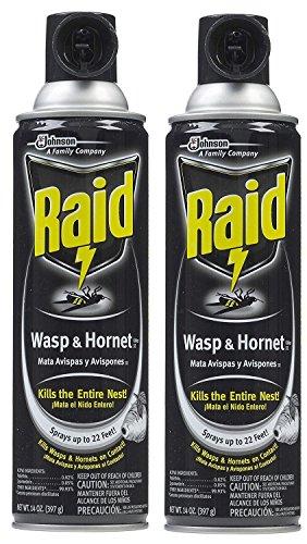 raid-wasp-hornet-killer-33-spray-erjexu-2pack-14-ounce