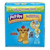 Health & Personal Care : Pull-Ups Hug Learning, 2t-3t Boy, 25 Count