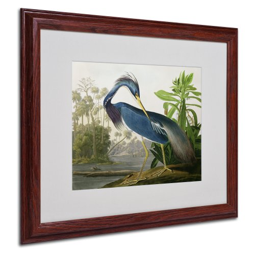 Louisiana Heron Matted Artwork by John James Audubon with Wood Frame, 16 by ()