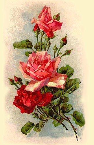"Waterslide Decals (4pcs 2.5""x3.5""each) Wild Roses FLONZ 0708 Vintage Flowers"