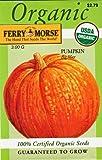 Search : Ferry Morse Organic Big Max Pumpkin Seeds