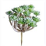 Supla 3 Pcs Assorted Green Artificial Succulent Cactus Echeveria Plants Unpotted Faux Succulent Cactus Desert Plants Flower Foliage for Succulents Wreath Floral Arrangement