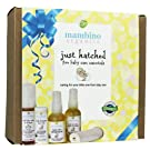 Mambino Organics Just Hatched Baby Arrival Kit, Essentials for New Mom-to-be